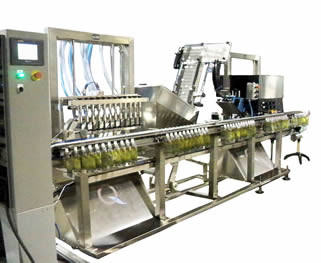 pouch filling machine and pouch capping machine